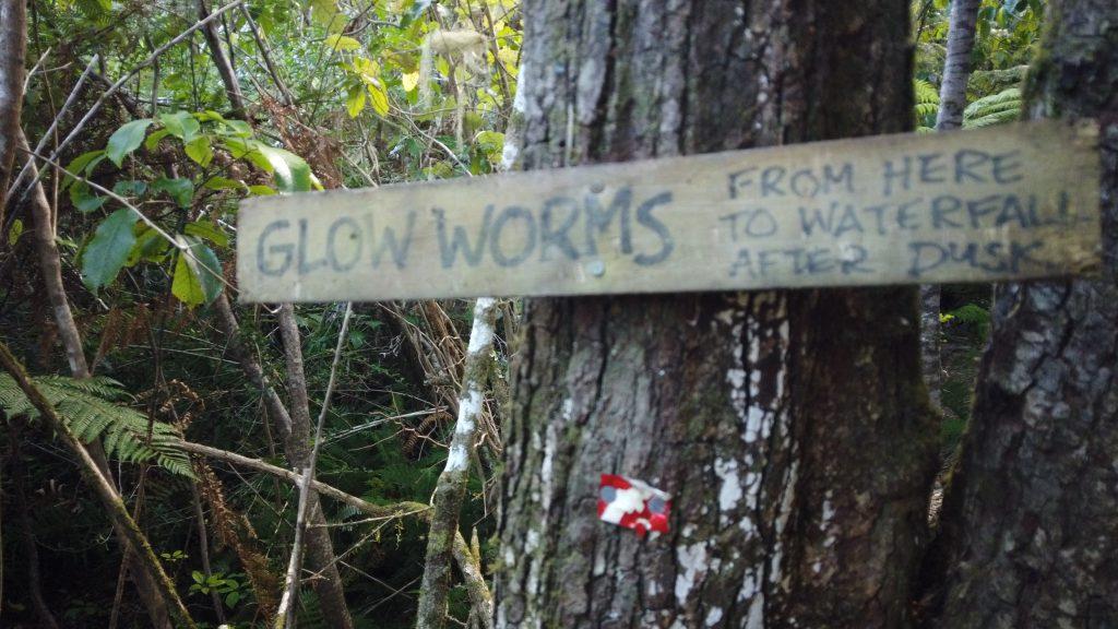 De glow worm route lopen