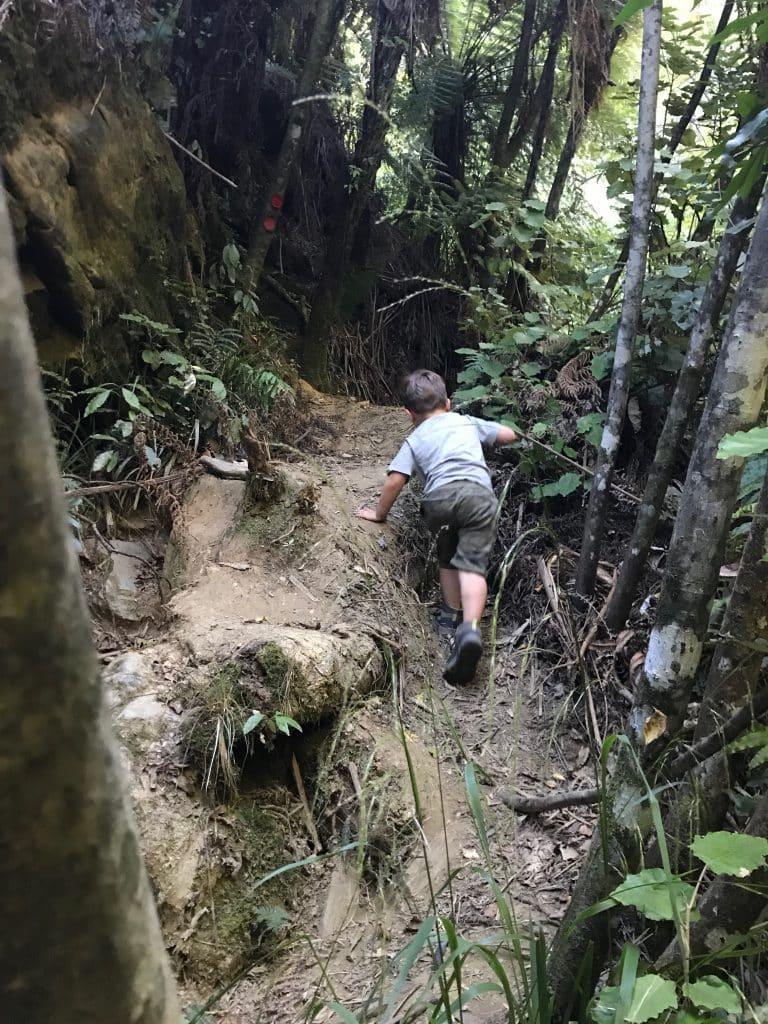 Het Owen pad